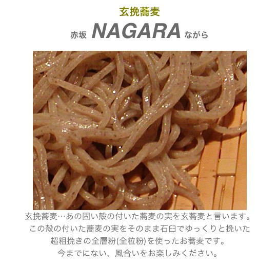 nagara_1.jpg